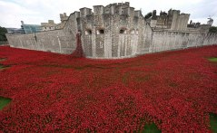 Blood Swept Lands and Seas of Red installation at the Tower of London